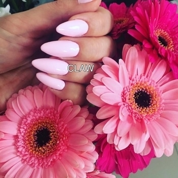 #pinknails#prettypink#simpleandclassynails#springnails#chicnailsfashion#nailartswag#prettynailsrock#nailart#nailartaddicts#fashionbloggerindia#fashiondiaries#stylestatement#nailsalon#nailstudio#claw#delhinailsalon#getclawed💅💅