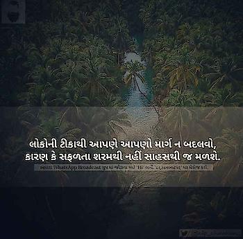#quet  #quets  #quetlove  #quetsoul  #rajkot  #indian  #gujarat  #cute