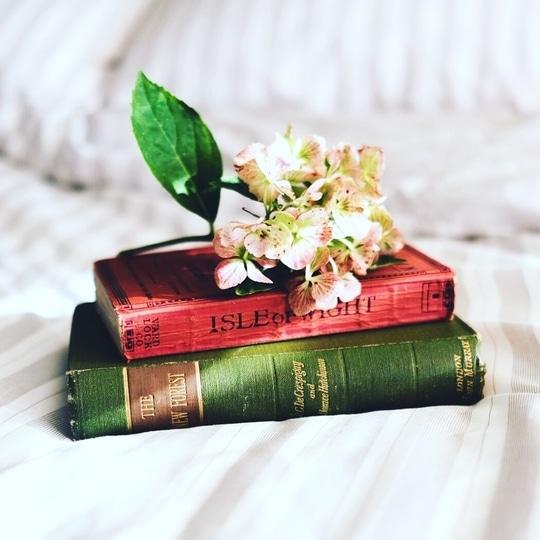 Why You Should Read Different 📖 Book genres? and more... @ exploreourway.com . . . . . . #bookblogger #book #books #instagram #inspire #inspiration #quotes #quote #eow #exploreourway #motivation #bookworm  #iamshivalisingla #poojasingla1 #influenster #influencer #blogmint #girlboss #bosslady #entrepreneur