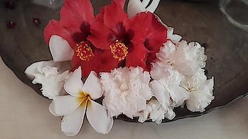 flowers from my garden #flowers #garden #beautiful #roposo #beauty