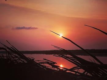 I pierced the Sun!! 💪🏼😀 #sunsets #goldenhour #photography #mumbaisunsets #streetsofmumbai #eveningglow #landscapephotography #sun #reflections #wanderlust #travelblogger #beautifuldestinations #indianblogger #travelphotography #picoftheday #instagood #storiesofindia #soi #mycity #mumbai #roposoblogger #soroposoblogger #soroposoblog #soroposotimes #soroposolove #soroposogood #roposo-mood #ropo-post #roposodaily