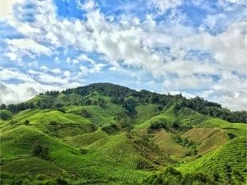 Malaysia Diaries #wanderlust