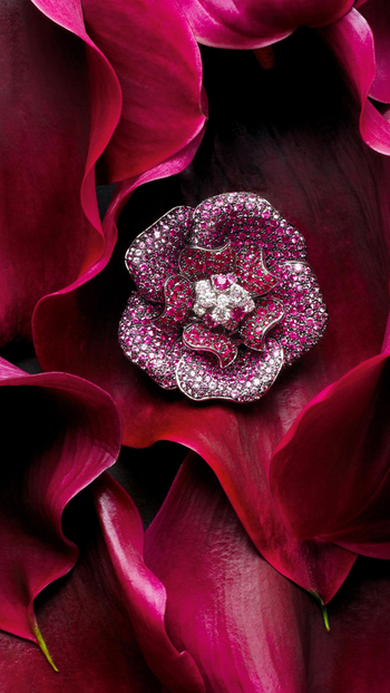 #diamondjewellery #mylatestbuy