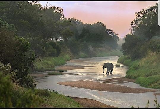 #wildlifephotography #captured