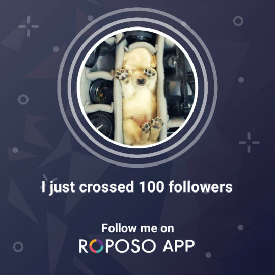 Thanks guys for your consistent support ! ❤  #roposo #followme  #formoreupdates