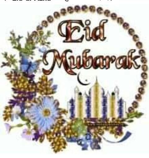 Ed Mubarak@ruksanakhan08 @muskankhan01c20eff @jueeal #edmubarak #edmfestival please follow me I back u follow