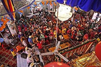 Offering #prayers at a Gurudwara on the #auspicious day of #Baisakhi. PC: AP photo/Manish Swarup #festival #celebrate #Punjab #India #tradition #heritage #incredibleindia #temple #vaisakhi #baisakhi2019 #love #beautiful #wow #amazing