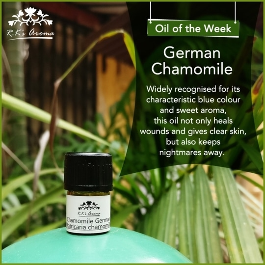 If you're looking for a truly versatile essential oil that's gentle on your senses too, you need to try R.K's Aroma German Chamomile essential oil today! #OilOfTheWeek