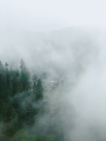 Mist in Kalga village | #kheerganga #parvativalley #kasol #kheergangatrek #trekking #himachal #travelgram #kheergangadiaries #peace #mountains #himachaldiaries #wanderlust #traveller #nature #himalayas #himachalpradesh #trippytrip #tosh #instapic #instalike #trek #photography #northindia #traveldiaries #travel #camping #travelling #incredibleindia #hiking #yatra