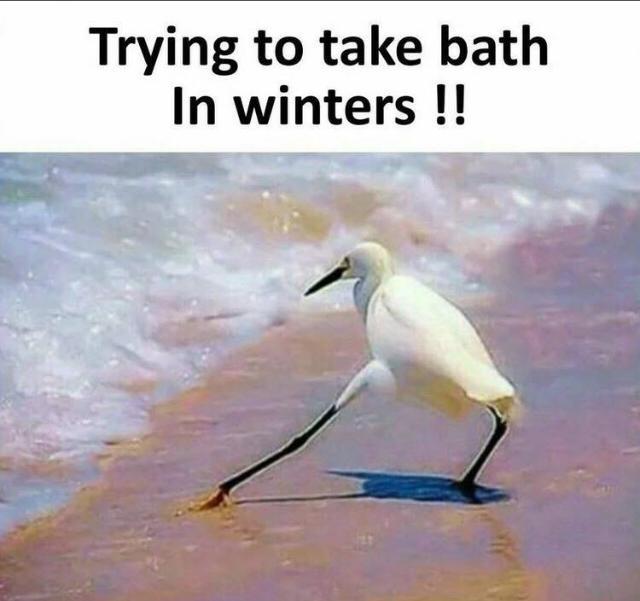 #haha_tv #haha #hahatvchannel #winter-style