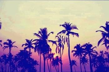 Beautiful Sunset...🌛🌛