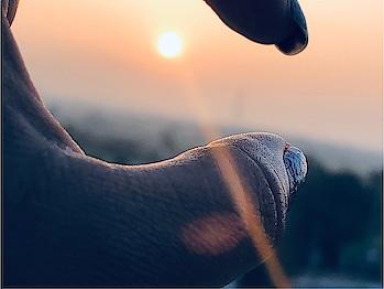 #caputred #roposostar #risingstar #roposochannel #photography #iphonex #appleiphone
