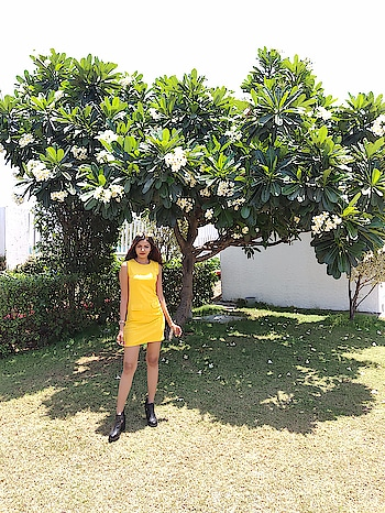 It's good to be surrounded by all positive vibes.....Happy Sunday fam! 🍃🌼  #devkidhuria #thesnazzydiva #happysunday #positivefeelings #positivevibes #positivethoughts #positiveenergy #galleri5influenstar #Plixxo #picoftheday #yellowdress #summerfashion #instalove #instacool #roposolove #soroposo #soroposolove #roposomumbai #roposofeature #roposotimes #roposostyle #roposostylefiles