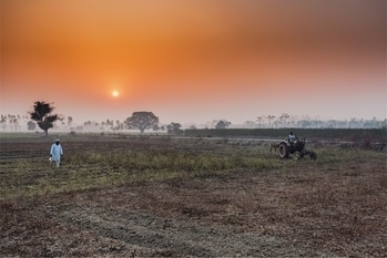 You not go far for locations.. just be there in any field.. you would love how the nature do miracle.  #sunset #goldenhour #wheatfields #dailylife #_soi #_coi  #streetsofindia #streetphotography #streetphotographyindia  #apfmagazine #creativeimagemagazine #incredibleindia #natgeotravelindia  #natgeotravel #travelbug #travelporn #travel #mist #rurallife  #yourshot_india #worldtravel #india_gram #canonasia #canonindia #inspirewithyourtravel #wanderlust #travelgram #landscape #ruralindia  If you like my photography please #followme #photography