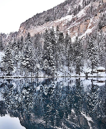 This pic tempts me to go this place again. So #calm So #serene Such #peace .You definitely want to just explore the whole place.  • • • • • #wanderer #globetrotter #travel #travelgram #mountains #snow #tree #jungle #nature #landscape #river #switzerland #photography #landscapephotography #switzerlandpictures #nofilter #hbsclicks  #naturephotography