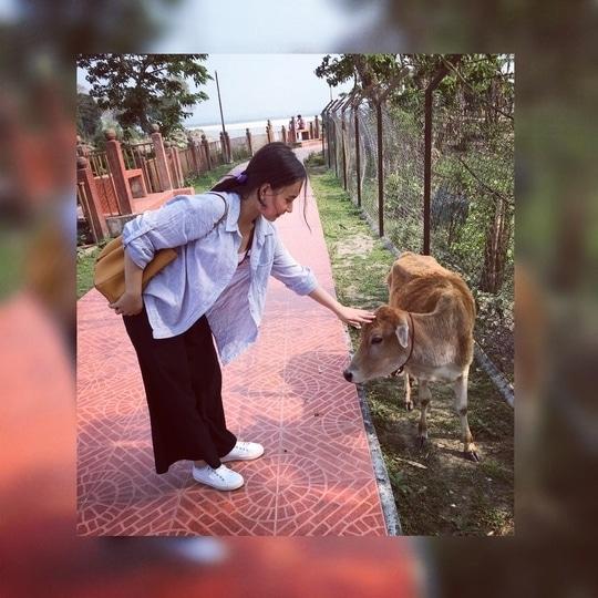 #love #animals #calf #beautiful #assam #nature #naturelovers #follow #followme #proneetaswargiary #bestoftheday #cute  #picture #picoftheday #instagram