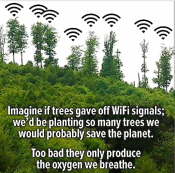 save nature otherwise no future