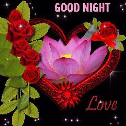 good night all friend