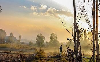 #sunset #Budgam #railway #station #myclick #hdr #click #trees #landscapephotography #landscape #photographerlife #photoofaday