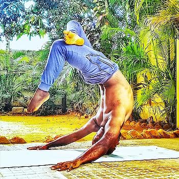 Sundays are for chilling.  also happy mother's day 🙏 . . . . #yogaeverydamnday #yogaeverywhere #mothersday #yogafit #headstand #yogamotivation #fitnessinspiration