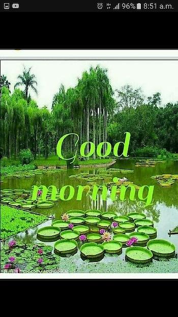 #goodmorningquotes