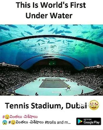 tenis stadium