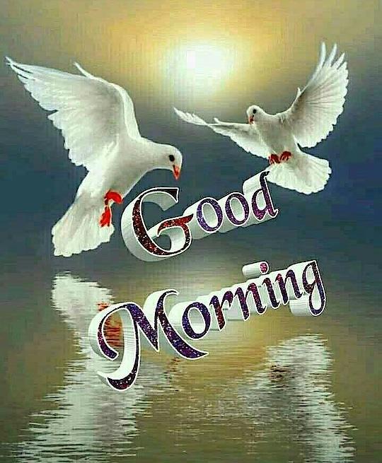 GOOD MORNNIG