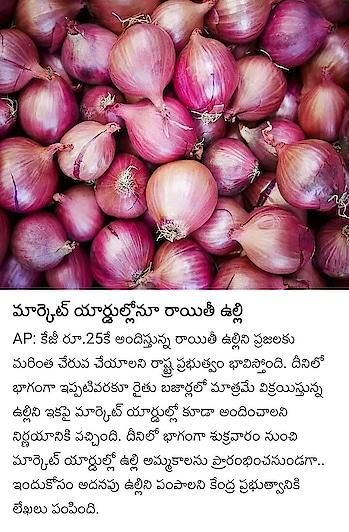 #onionprice