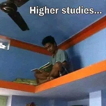 Higher studies