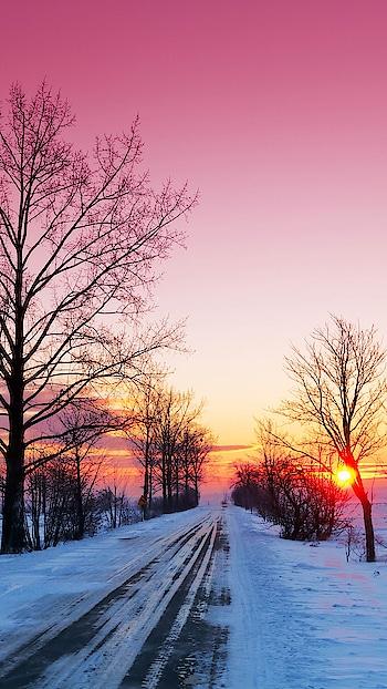 Sunshine #sunshine #sunflower #sunset #sunshinesmile #beautiful