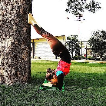 Pincha Mayurasana....😇  #yoga #yogasession #yogini #yogalover #yogastudent #yogaspirit #yogainnature #yogqeverydamnday #pinchamayurasana #armbalance #armworkout #yogawithin #yogaworld #yogaeverywhere #yogamyway #yogamylove #ashtangayogalovers #patanjaliyoga #fitgirl #fitnessfreaks #firstattempt #stronggirl #ryt200 #iyogacommunity #iyogacenter #yogasequence #mysoreyogatraditions #yogaaddict  #yogaspirit #forwardbackward #firstattempt #yogaaasan