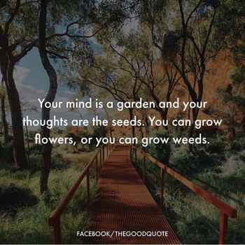 #floral #beauty #thoughtful #soulfulquotes #soulful #flowers #thoughtoftheday #motivation #motivationalquotes #beautyinmind #weeds #seeds #beautifulpic  #poem #lines