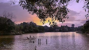 sunset.. #sun #sunset #sunset_pics #sunsetlovers #sunsetphotography #photography #photo #photographs #photomaker #photographersofindia #photographerslife #photo-roposo #roposo #roposo-telent #roposo-creative #roposo-tendening #roposo-contest #picture #pictureoftheday #photooftheday #indian #indiaphotography #worldwide #worldphotographyday #worldphotographers #roposo-art #trendings  #northeastindia #tripura   @roposocontests @roposotalks