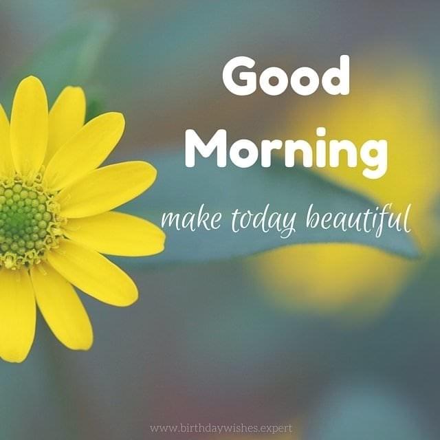 #goodmorningpost #beautifulmorning
