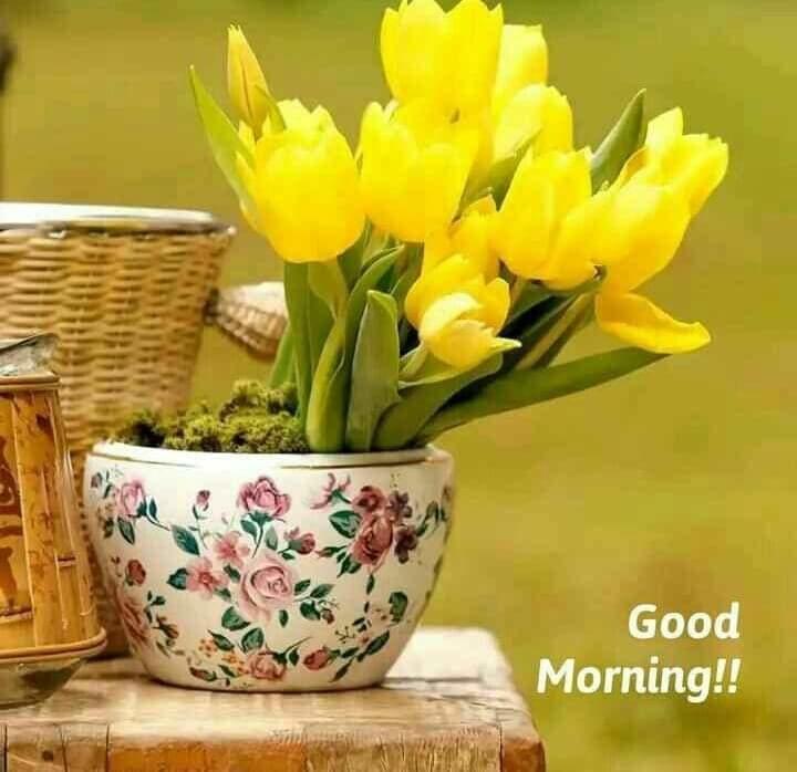 #morningselfie