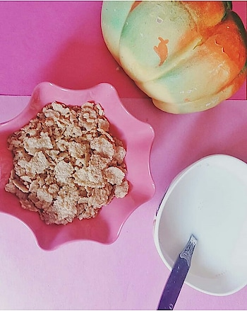 My Favourite part of the day! Breakfast! Starting the day with everything healthy is the best way to detox.  This is my way 😎 A bowl of Kellogs Cornflakes with lukewarm milk.  #breakfasttime . . . . . . . . . . . . . . . . . . . . . . #food #foodgram #foodie #foodsofinstagram #foodporn #foodblogger #indianfoodblogger #puneblogger #punefoodblogger #foodgasm #foodphotography #flatlays #foodlove #instagram #instagrammers #igers #instago #foodtalkindia  #breakfast #cornflakes #kellogs #specialK #healthybreakfast #health #nocheat