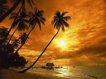 #kokan #beach #beachlove #holidayseason