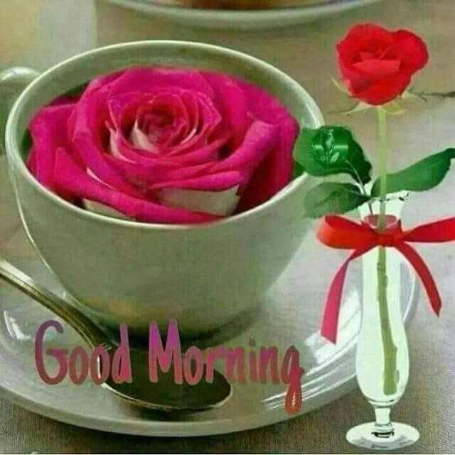 #dailywishes #good----morning #ropos-good-morning #good-morning