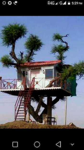 #trees  #treehouse #art #nature #wow #awesome