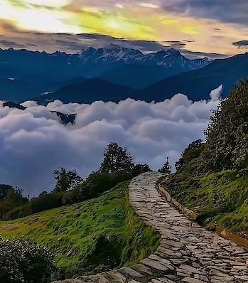 Chopta-Tungnath Trek #chopta #tungnath #uttarakhand