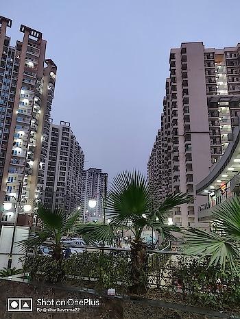 Just wanted to flaunt that #ShotOnOnePlus watermark 🙈 Iska bhi apna alag hi maza hai aur ek baar toh banta hai 😍 #NoEdit #NoFilter #ShotOnOnePlus6 🤗 ⠀⠀ ⠀⠀⠀ ⠀⠀ ⠀⠀⠀ ⠀⠀ ⠀⠀⠀ ⠀⠀ ⠀⠀⠀ ⠀⠀ ⠀⠀⠀ ⠀⠀ ⠀⠀⠀ ⠀⠀ ⠀⠀⠀ ⠀⠀ ⠀⠀⠀ ⠀⠀ ⠀⠀⠀ ⠀⠀ ⠀⠀⠀ ⠀⠀ ⠀⠀⠀ ⠀⠀ ⠀⠀⠀ ⠀⠀ ⠀⠀ ⠀⠀⠀  #thepinkvelvetblog #niharikaverma #oneplus #oneplus6 #oneplusindia #noida #cityview #citylights #cityscape #citylife #onepluslife #sodelhi #lbbdelhi #ifoundawesome #newyork #blueskys