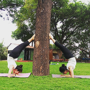 Pincha Mayurasana practice with @yogini_priya 😍😍  #yogasession #yogainnature #yogawithin #yogaspirit #yogaaddict #yogaspirit #yogagirl #yogagoals #yogalover #yogaeverywhere #yogaeverydamnday #yogamylife #forearmstand #fitnesschallenge #fitnessfreaks #fitnessmotivation #mondaymorningyoga #armworkout #armbalance #strengthtraining #stronggirls