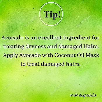 Tip of the Day  . . Avocado is an excellent ingredient for treating dryness and damage hair. . Avocado is rich in fatty amino acids that coat your hair shaft and help it retain moisture.  . It contains vitamins A, B6, D, and E, and minerals like copper and iron which help it nourish your hair and scalp. This also helps promote healthy hair growth.  Avocado has a high content of antioxidants like vitamin E which helps prevent hair damage from free radicals. This helps keep your hair healthy for longer.  It helps repair damage by conditioning and providing your hair with basic essential nutrients it needs to be healthy. . . Avocado And Coconut Oil Hair Mask . Ingredients 👇 👉Ripe Medium Sized Avocado 👉2 tbsp Coconut Oil . . Process 👇 . In a bowl, mash the avocado. To mashed avocado, add two tablespoons of coconut oil and mix well. Start applying this mixture to your hair and scalp. Ensure that you focus on the tips of your hair as these are the oldest and most damaged parts. Once your hair is fully covered in the mixture, cover it with a shower cap and wait for 30 minutes. Proceed to wash your hair with cool water and shampoo. Finish with conditioner. Can apply this mask 1-2 times a week. . . . . . . . . . . . . . . #haircaretips #haircare #avocado #coconutoil #hairmask #diyoftheday #homemade #naturalproducts #naturalingredients #diy #tipoftheday #tipsforhair #healthyhair #shinyhair #damagedhair #damagedhaircare #beautyinfluencers #bangalorebeautyinfluencers #indianbeautyblogger #indianbeautyblog #beautifulhair #avocadomask #coconutoilbenefits #coconutoilhairmask #avocadohairmask