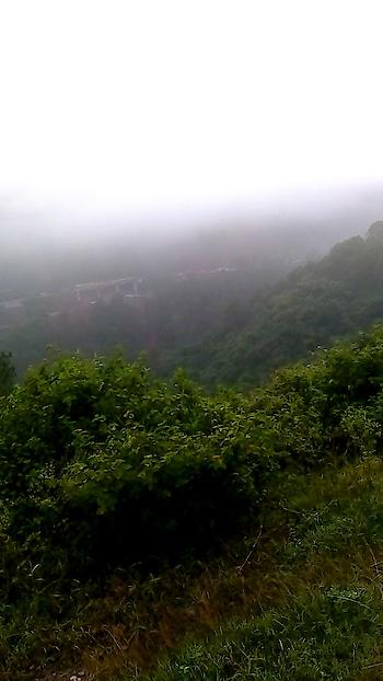#foggy