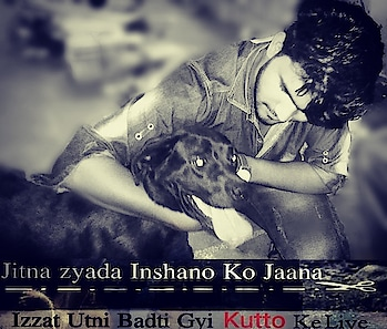 #doglover #black-and-white #tagsforlikes