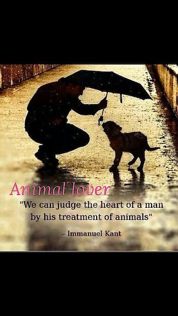 Love animal and care animal