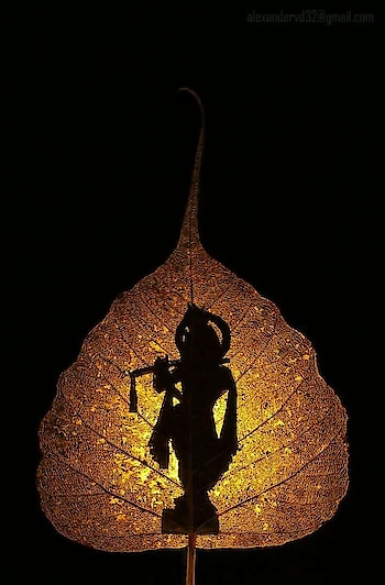Plz start following me #lordkrishna  #leaves  #lightphotography  #shadowphotography