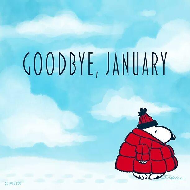 #january #january2019 #2019