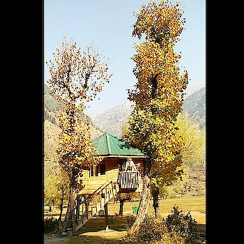 Tree houses are the ultimate return to nature.... #traveldiaries #motherdaughtertrip #motherdaughter #kashmir #wayofliving #beauty #nature #travel #tour #treehouse