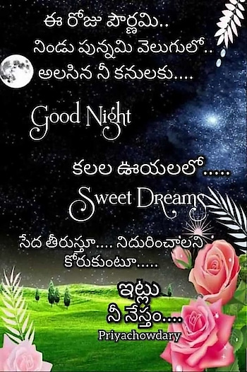 #dailywishes #goodnight